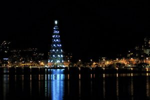 The Christmas tree in Lagoa, photo by Teresa Eugenia.