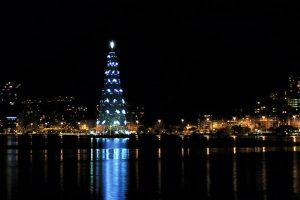 The Christmas tree in Lagoa, photo by Teresa Eugenia.