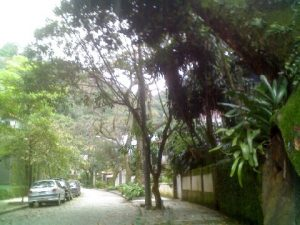 Cobblestoned, tree-lined street in Gávea, photo by Karen Shishiptorova.