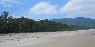 Ilha Grande hopes to protect the sanctity of its shores and preserve its wildlife. Rio de Janeiro, Brazil, News