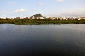 Discovering the Chico Mendes Ecological Reserve in Recreio, Rio de Janeiro, Brazil News