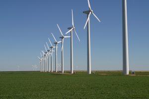 Wind power farm, Rio de Janeiro, BRazil, Brazil News