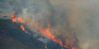 Forest fires in Rio de Janeiro, Itaipava,