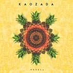 KAOZADA 800