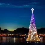 Brazil News, Brazil, Rio, Rio de Janeiro, Lagoa Rodrigo de Freitas, Christmas Tree, Rio's Floating Christmas Tree