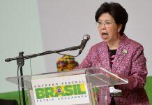 Brazil, Brasilia, Zika virus, WHO