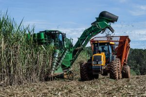 Brazil,Sugarcane producers will benefit from recent Brazil-EU agreement