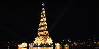 Lagoa Christmas Tree, Lagoa, Rio de Janeiro.