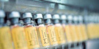 Rio de Janeiro State Plans to Vaccinate 11 Million for Yellow Fever, Rio de Janeiro, Brazil, Brazil News