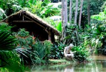 The fisherman's hut similar to the traditional Amazonian dwellings can be seen at the Jardim Botânico in Rio, Rio de Janeiro, Brazil, Brazil News