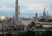 Brazil,Petrobras cuts gasoline and diesel fuel prices at its refineries