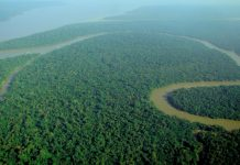 Brazil, Amazon,The Amazon region is believed to hold record deposits of copper, manganese and other minerals,