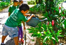 'Rio Eu Amo Eu Cuido' promotes and organizes many hands-on activities for both adults and children to give something back to their beloved city, such as gardening, litter picking and graffiti removal, Rio de Janeiro, Brazil, Brazil News.