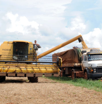 Brazil,Producers are complaining that the new freight rates will place the burden on them this harvest,