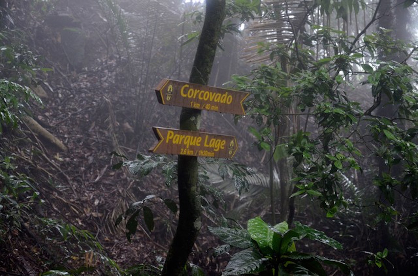 Brazil,Trail that goes from Parque Lage to Corcovado mountain is very popular among tourists.